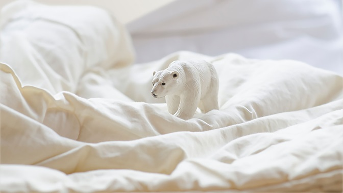 Toy polar bear on white bed sheets