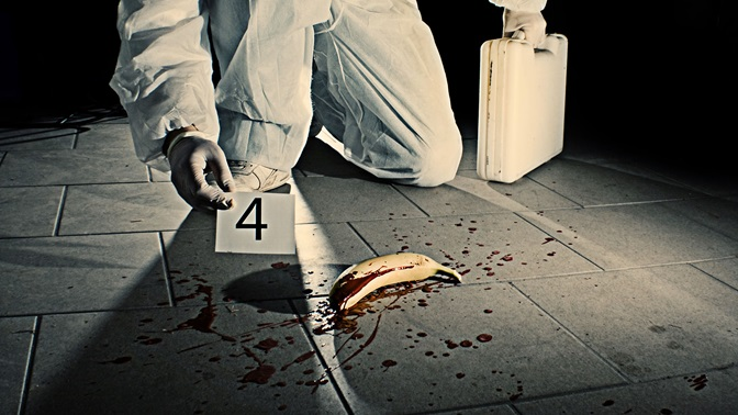 "Forensik at a ""dead"" banana"