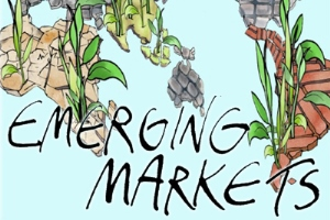 HSG Focus Emerging Markets